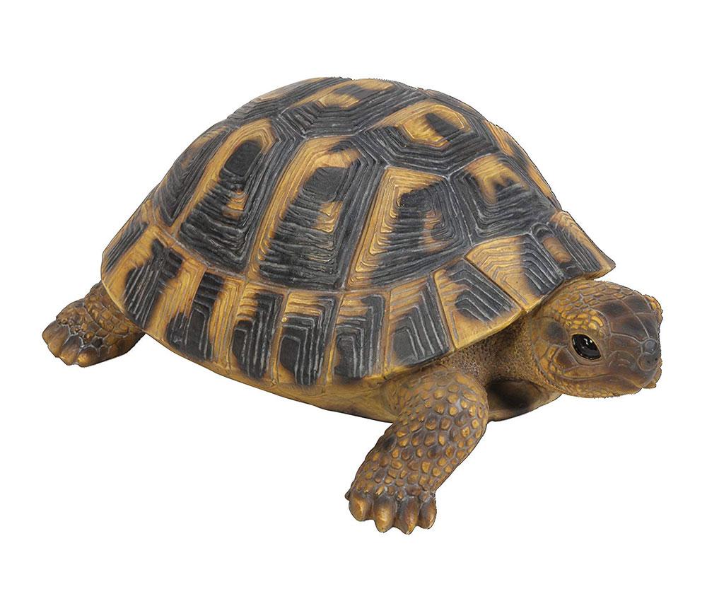 Muñecos realistas de animales: Tortuga